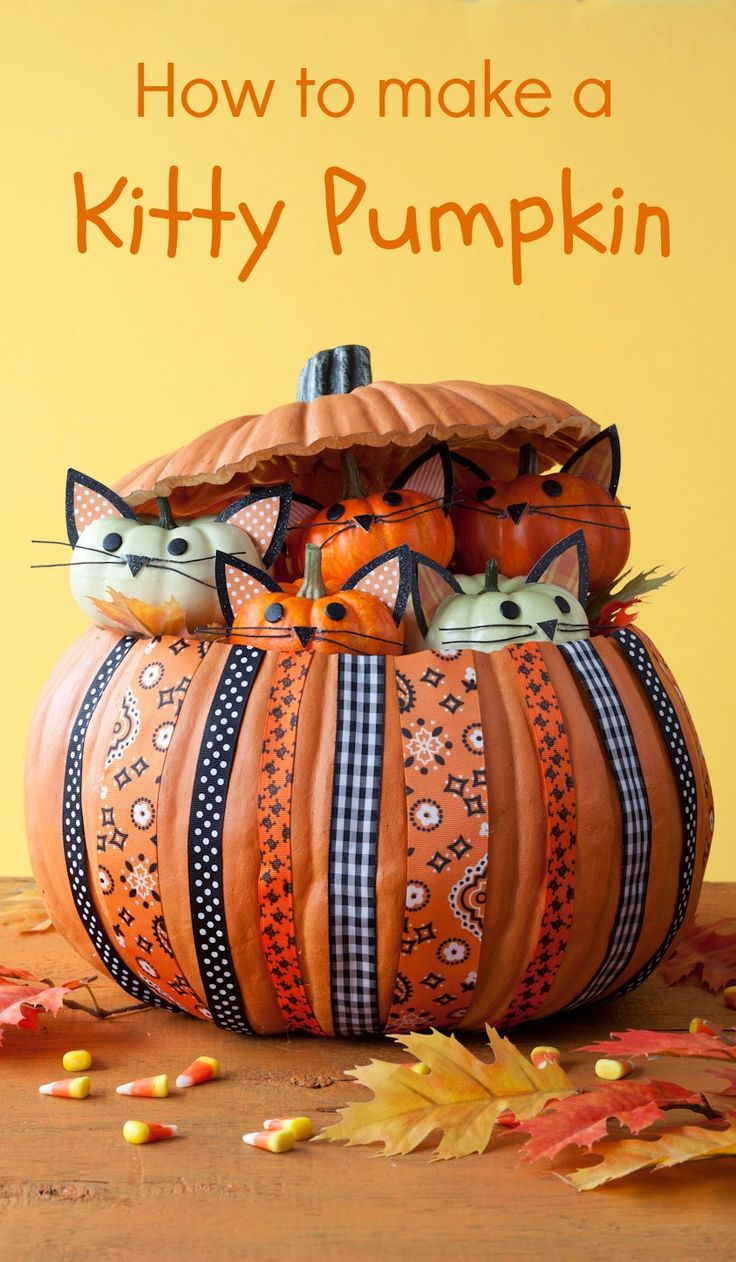 Kitties in a Gourd
