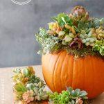 23-diy-fall-centerpiece-ideas-homebnc