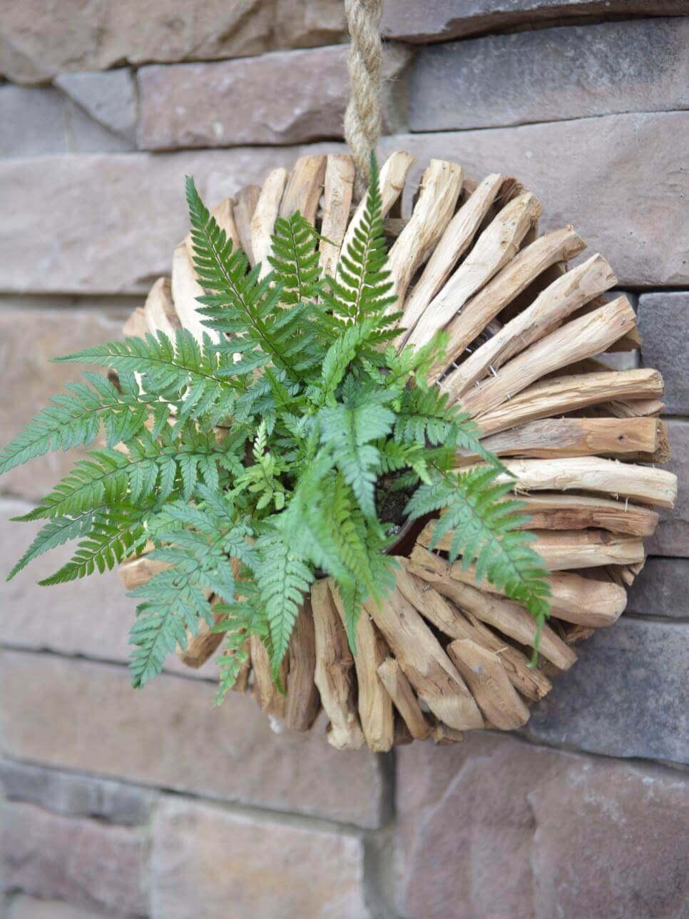 Striking Circular Wooden Fern Planter