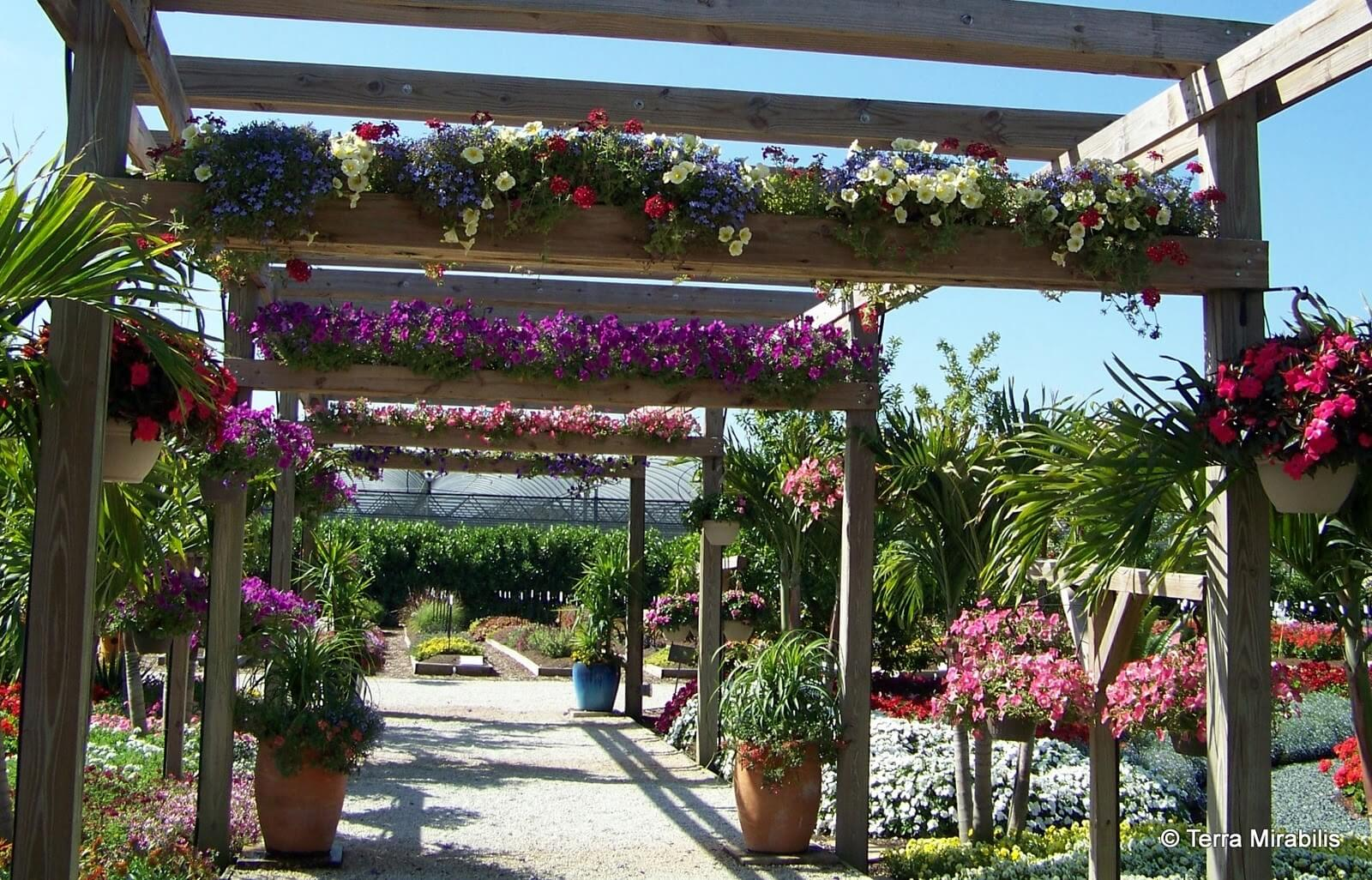 Botanical Promenade Pergola With Planter Implements