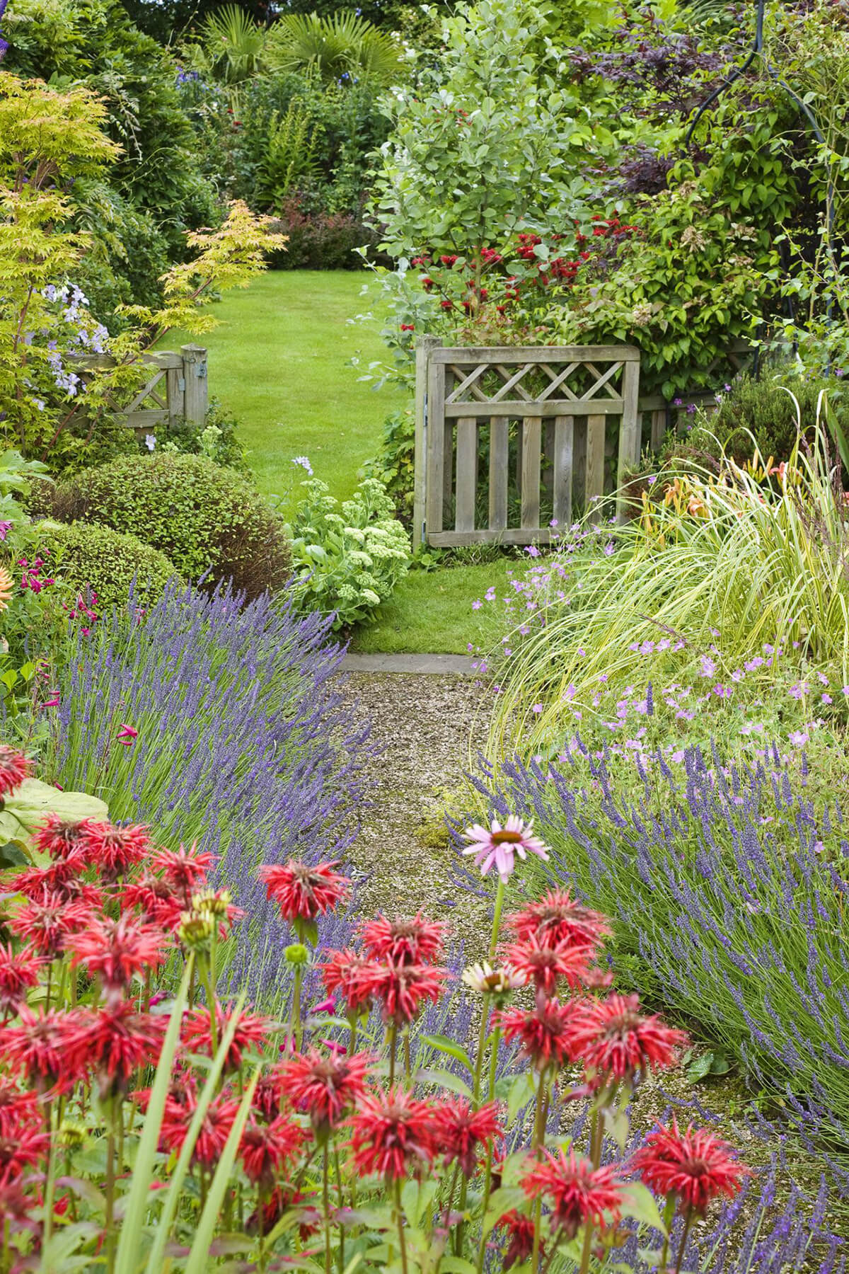 Curved Path with Tall Flowers