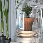 24-farmhouse-plant-decor-ideas-homebnc