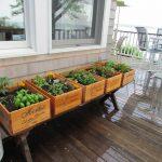 24-herb-garden-ideas-homebnc