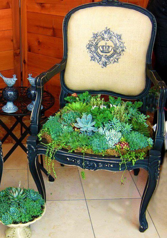 Replace a Chair Seat with Succulents