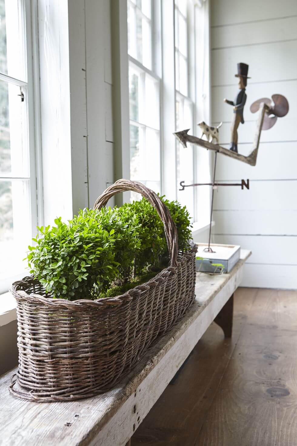 Oversized Basket of Greens on a Bench