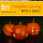 25-pumpkin-carving-ideas-homebnc