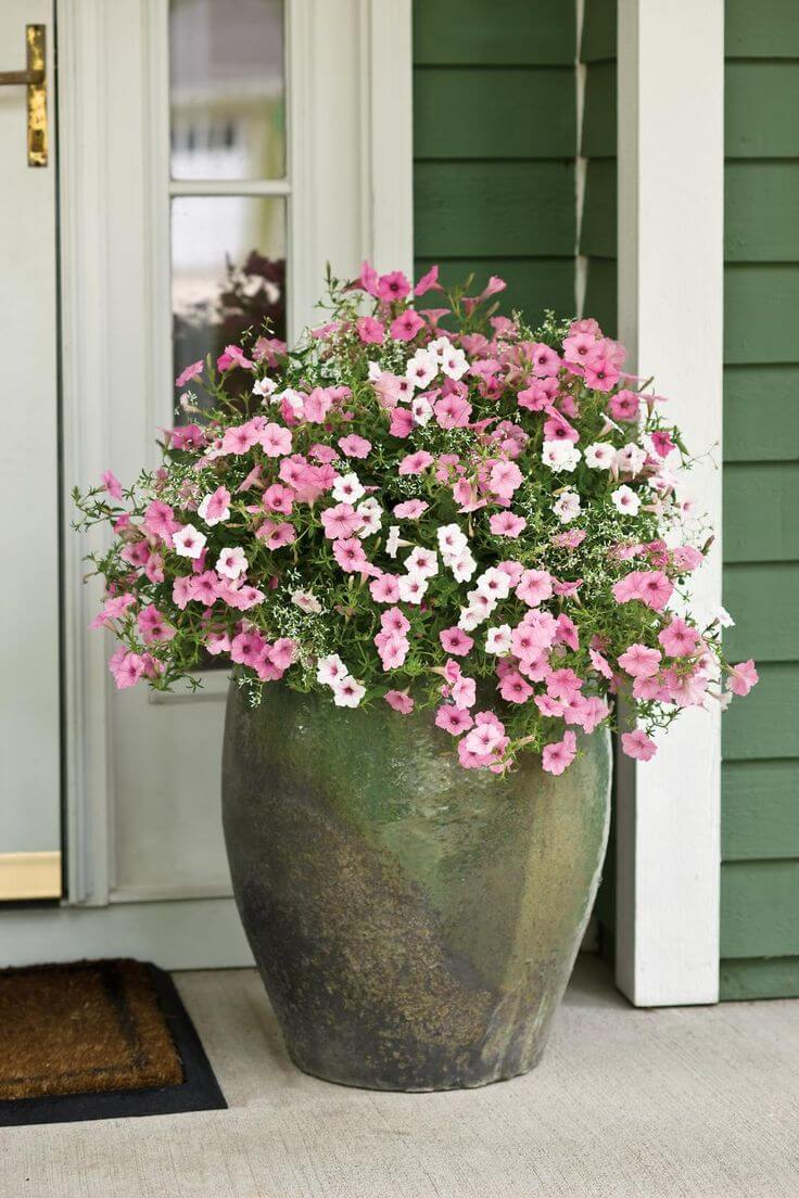 Giant Clay Spring Flower Planter