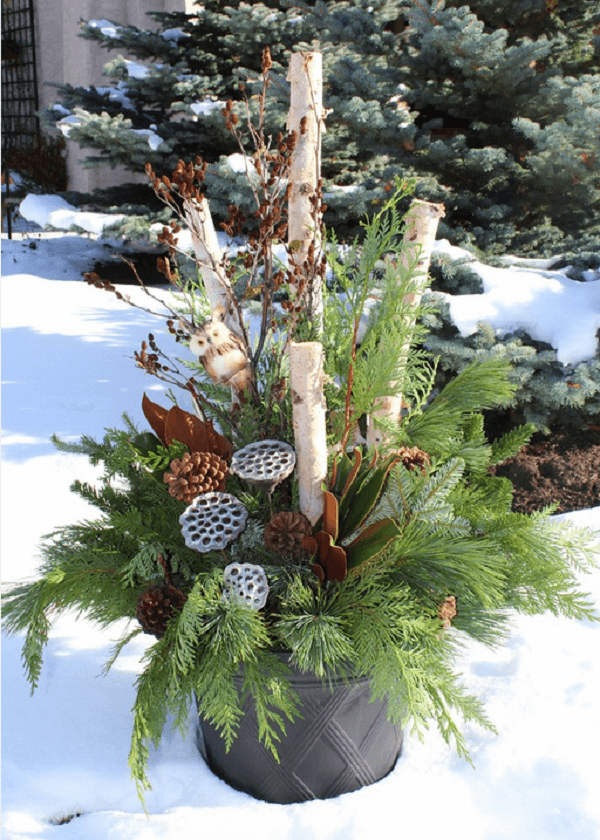 Rustic Birch and Evergreen Planter