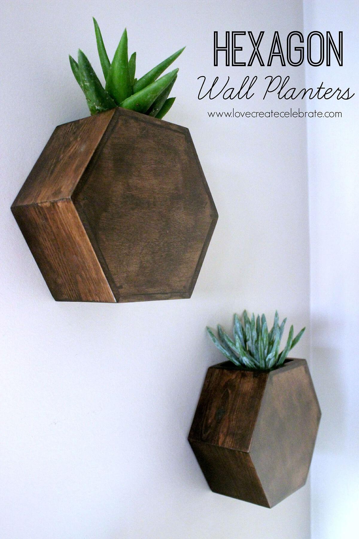Modern Style Hexagonal Wall Planters