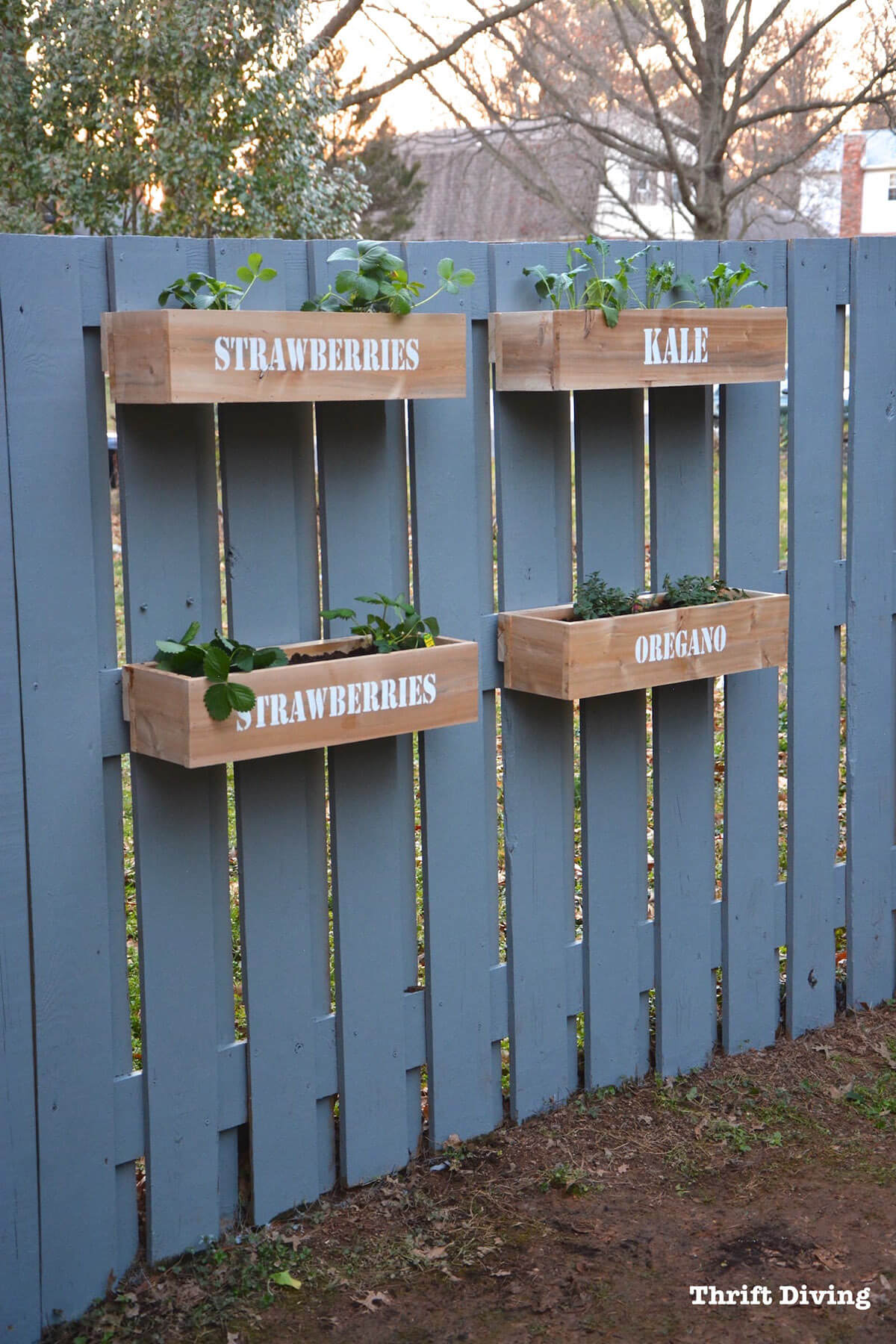 Wall Planter Garden with Stenciled Lettering