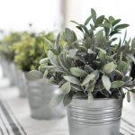 29-farmhouse-plant-decor-ideas-homebnc