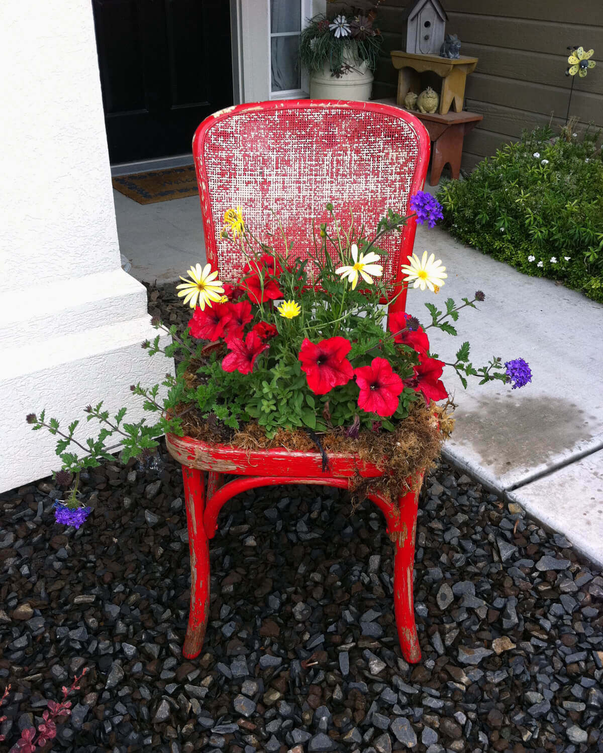Upcycled Chair Planter with Overgrowing Flowers