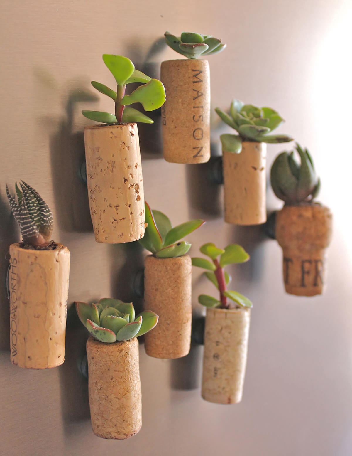 Tiny Planters with Wine Corks