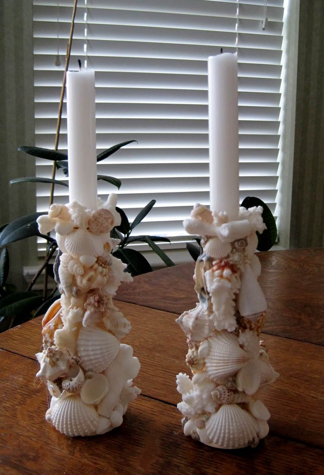 A Candelabra of Small Shells