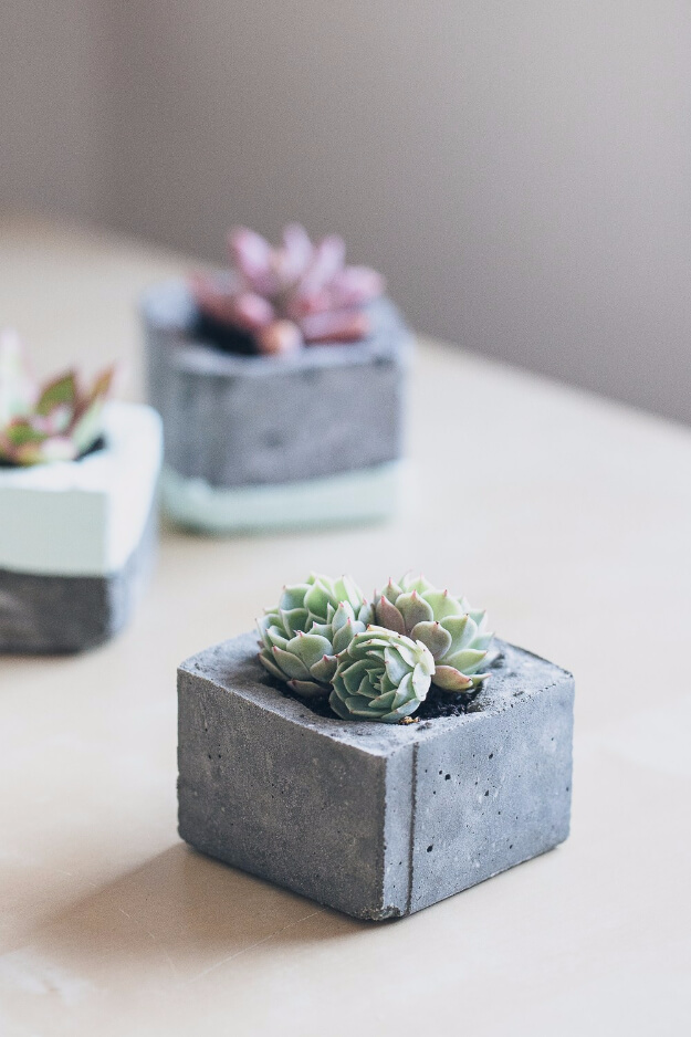 Little Cinder Block Succulent Planters