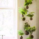 34-a-modern-vertical-garden-design-vertical-garden-homebnc