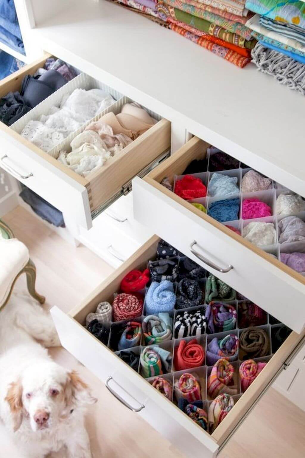 Multiple Paper Plastic Shaped Drawer Organizers