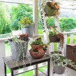 34-repurposed-old-ladder-ideas-homebnc