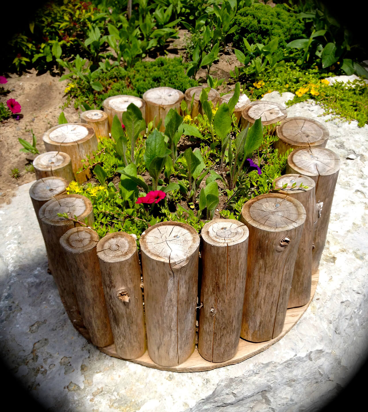 DIY Rustic Flower Planter with Logs