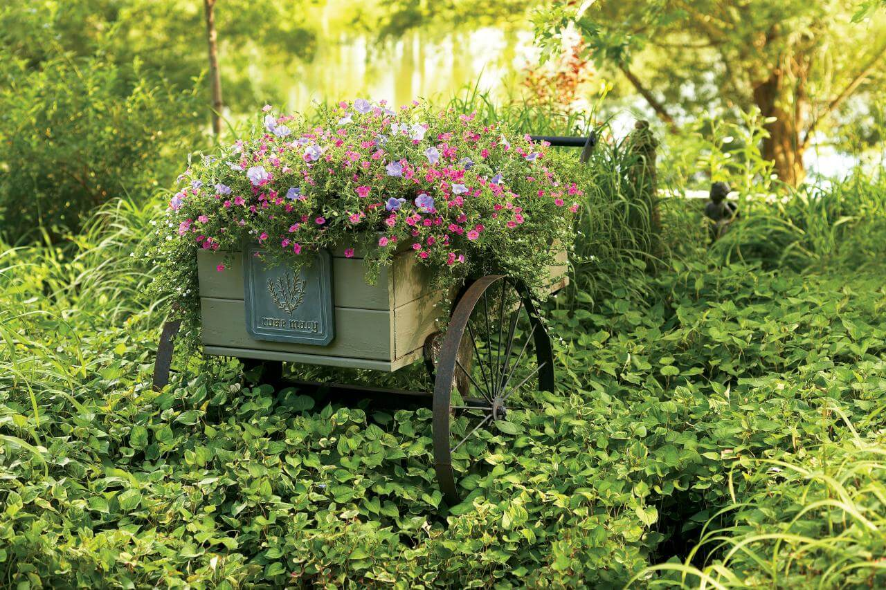 Planted Wheelbarrow in Lush Greens