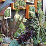 39-natural-wood-frames-house-a-miniature-garden-vertical-garden-decor-homebnc