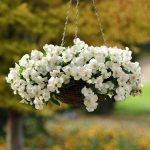 39-outdoor-hanging-planter-ideas-homebnc
