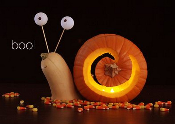 Snail 'in Pumpkin