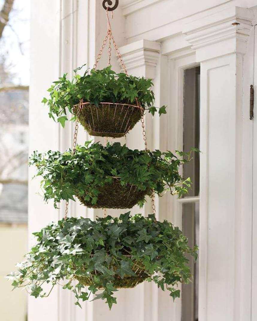 Three Tiered Hanging Ivy Baskets