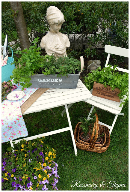 Potted Herb Garden on a Table
