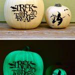 44-glow-in-dark-pumpkin-vinyl-homebnc