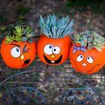45-halloween-pumpkin-decorations-homebnc