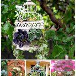 birdcage-planters-pinterest-share-homebnc