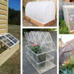 diy-green-house-ideas-featured-homebnc-351×185