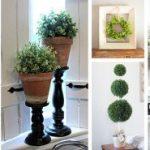farmhouse-plant-decor-ideas-featured-homebnc-v2-351×185