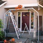 pumpkin arch3