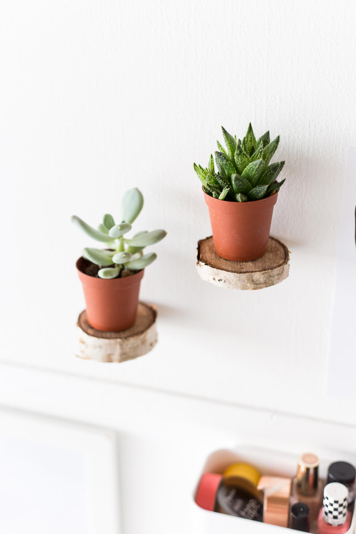 Floating Plant Shelf from Birch Wood
